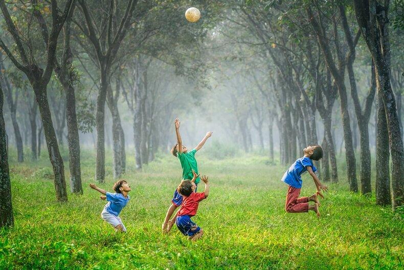 Ecological Playfullness